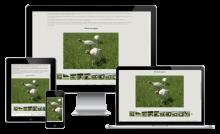 Галерея на сайте компании OOO «Агрофирма Хрустали»