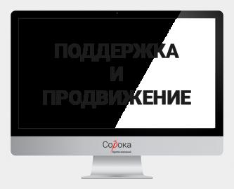 """Поддержка и продвижение сайтов в digital-агентстве """"Сорока"""""""